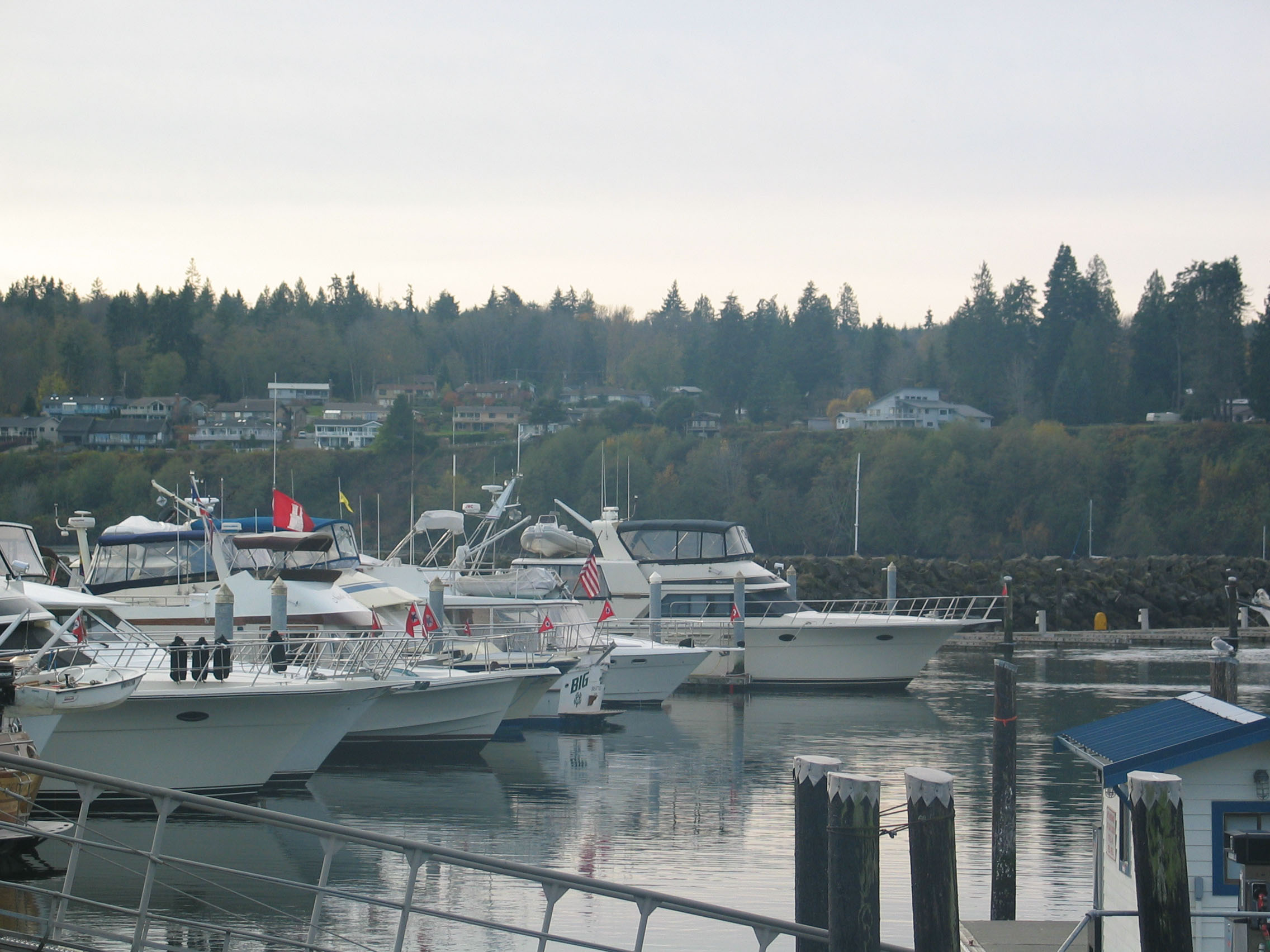 Queen city yacht club seattle - Body 6 pack